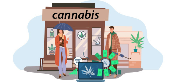Why Is SEO Important for the Cannabis Niche?
